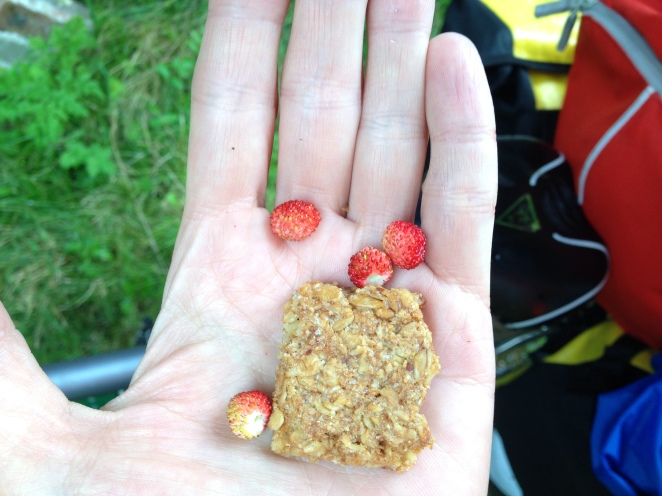 strawberries and crunch bar!